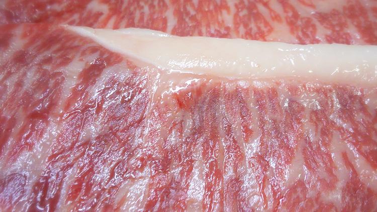 【特選福島牛】とろけます!「特選福島黒毛和牛A4-5」で満腹満足【ふくしまプライド。