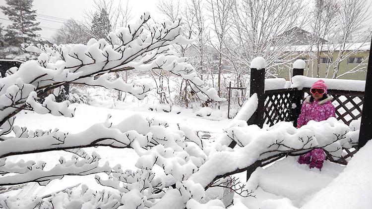 【スノーシュー体験】ファミリーで楽しめる フカフカ雪上トレッキング体験と「ハフハ フあったか鍋」プラン